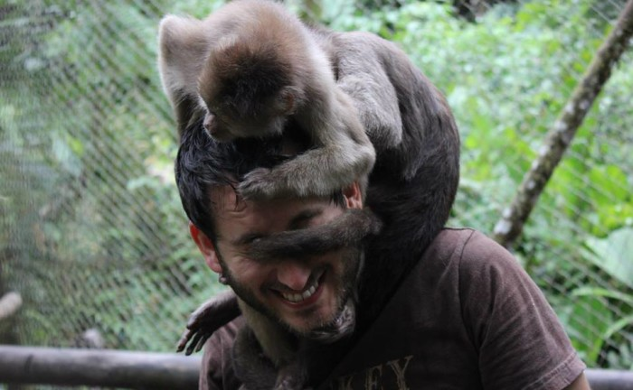 volunteer work wildlife conservation ecuador